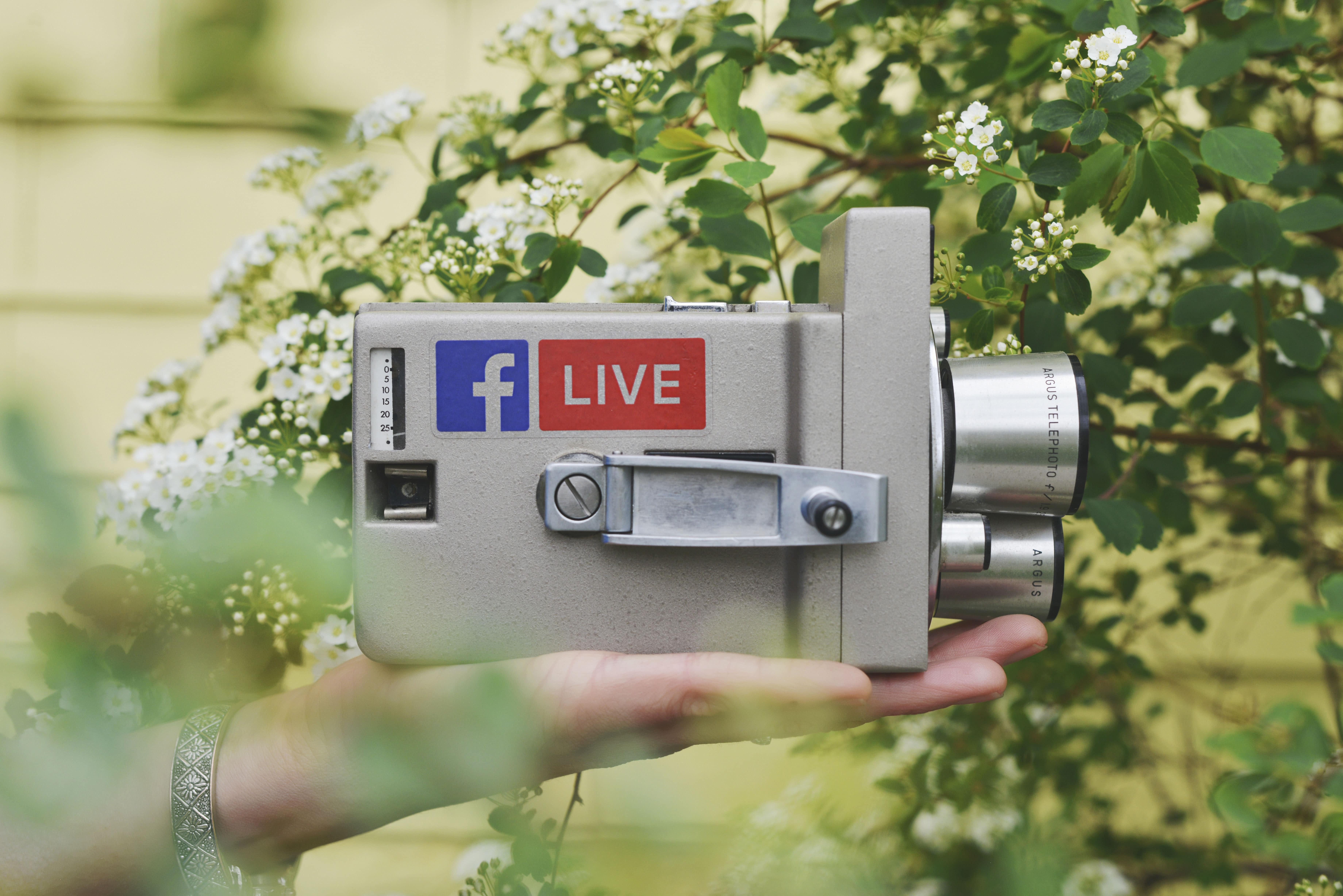 Live in Vidyo
